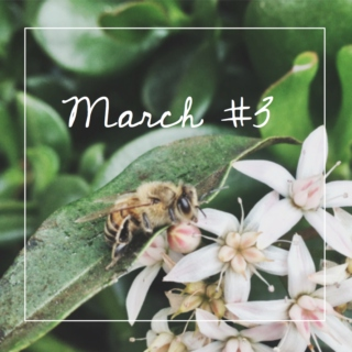 march #3