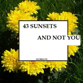 Pod fortepianem to ja a.k.a dcbb2015: forty-three sunsets and not you