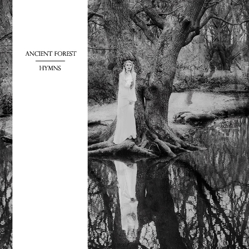 Ancient Forest Hymns
