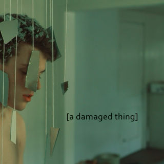[a damaged thing]