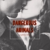 dangerous animals | a pitty mix