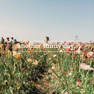 another sunny day | spring mix