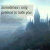 sometimes i only pretend to hate you
