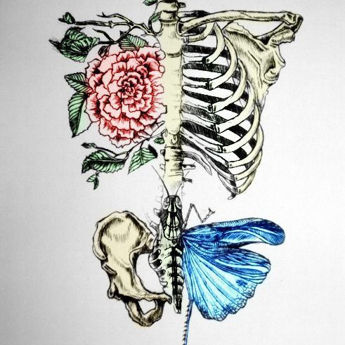 your bones are an art