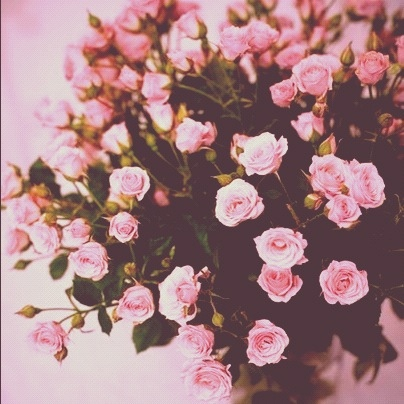 These are for you