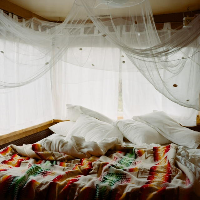 sunrise and twisted sheets