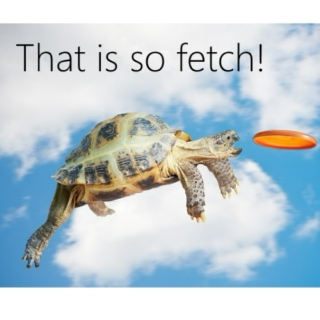 Indie can make fetch happen!