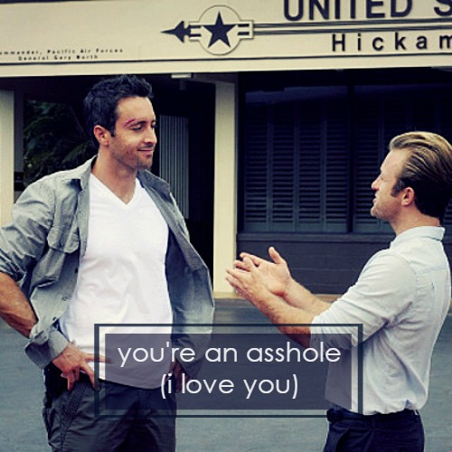 you're an asshole (i love you) (a mcdanno mix)