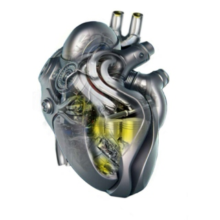 Mechanical Hearts and Silicon Skin