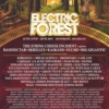 A Day at Electric Forest 2015