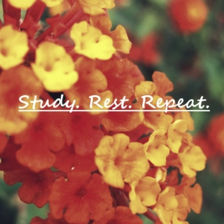 Study. Rest. Repeat.