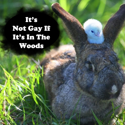It's Not Gay If It's In The Woods