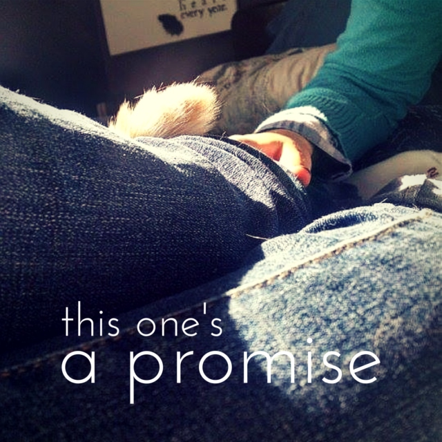 this one's a promise