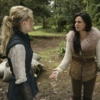 Swan Hood and the Evil Queen