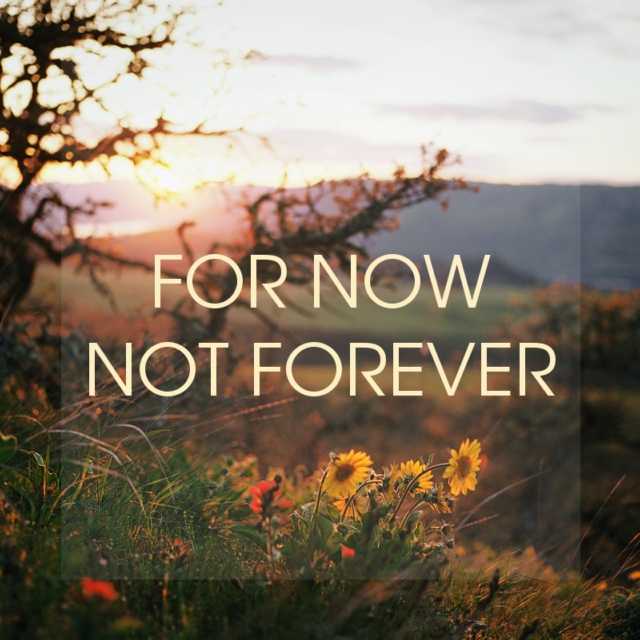 for now not forever