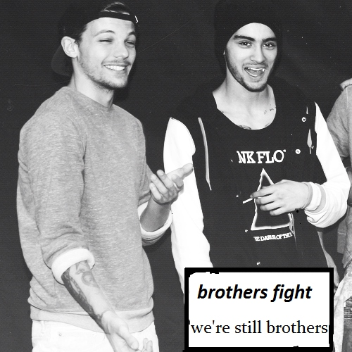 """""""brothers fight"""""""