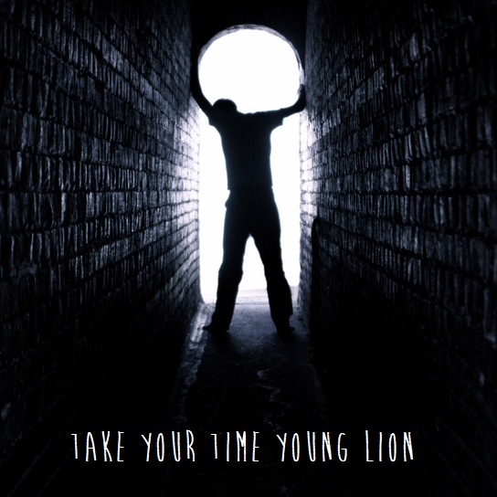 take your time young lion