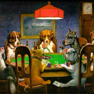 dawgs listening to tunes, drinking brews, playing cards