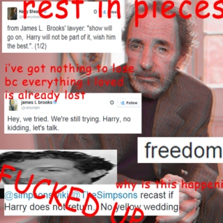 WHAT THE HECK HARRY SHEARER