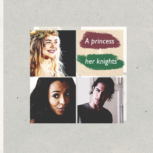 a princess & her knights
