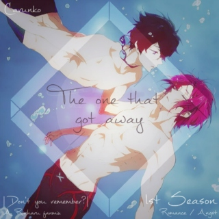 The one that got away - ♥Rinharu fanmix♥