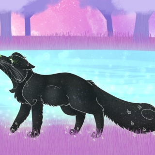 Lament from Starclan