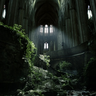 In the desolate ruins of neglect, a forsaken beauty is found.
