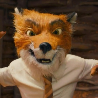More from Mr. Fox!