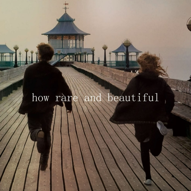 How Rare and Beautiful