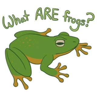 What ARE frogs?