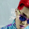 The Best of Zion T