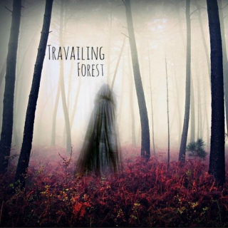 Travailing Forest