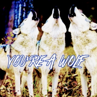 you're a wolf