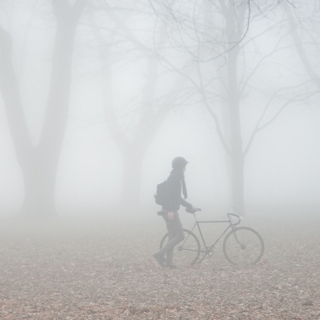 Lost Within The Fog