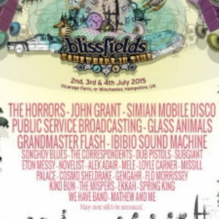Ones to Watch at Blissfields 2015