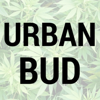 Urban Bud Weed Mix
