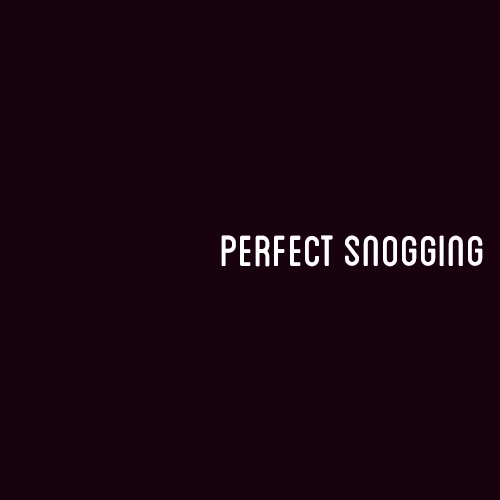 Perfect Snogging