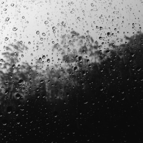"""the rain is my favorite instrument and only the sky can play it"""