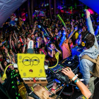 Its A Dance Party In This Pineapple