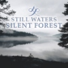Still Waters. Silent Forest.