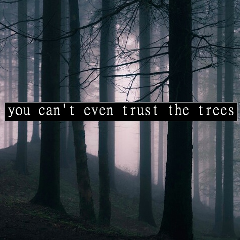 You Can't Even Trust the Trees