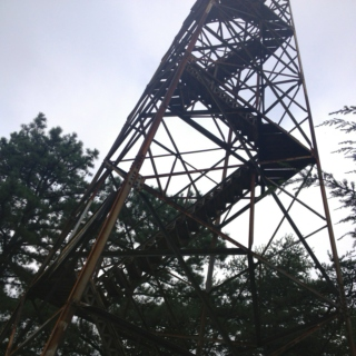 Fire Tower Shout
