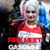 Fire Meet Gasoline — Harley Quinn