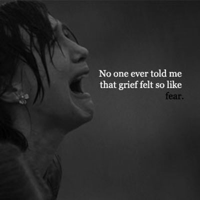 'no one ever told me grief felt so like fear'