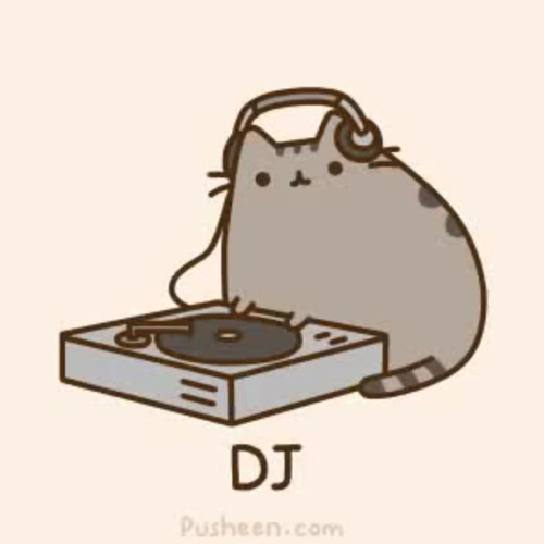 // the dj is a cat //