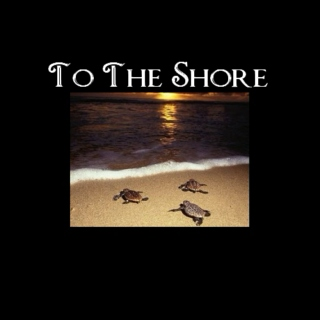 To The Shore