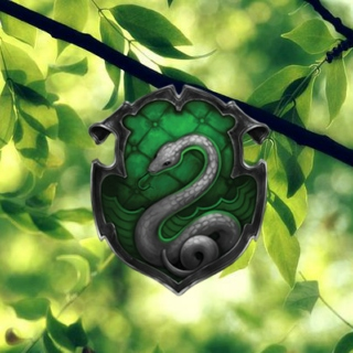♡ slytherin ♡