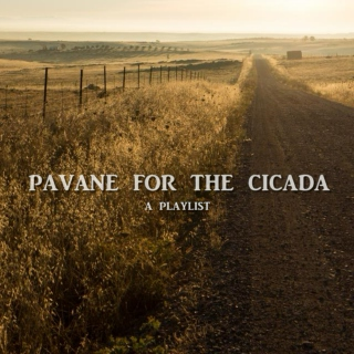 pavane for the cicada