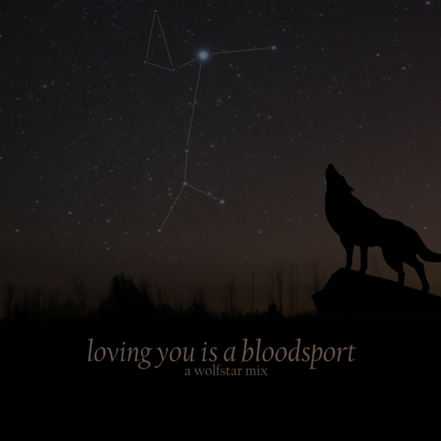loving you is a blood sport