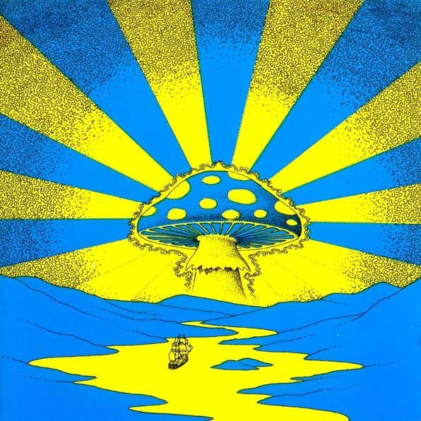 The Psychedelic Voyage